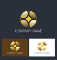 round abstract geometry gold business logo vector image vector image