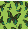 Seamless pattern with green butterfly vector image vector image