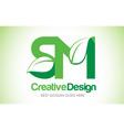 sm green leaf letter design logo eco bio leaf vector image vector image