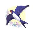 swallow isolated bird bird flying bird vector image vector image