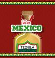 viva mexico poster icon vector image vector image