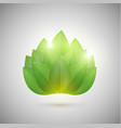 abstract green leaves vector image