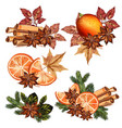 christmas set with oranges cinnamon and fur tree vector image