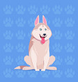 dog husky happy cartoon sitting over footprints vector image