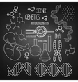 Genetic research set vector image vector image