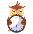 owl with big clock on white background vector image vector image