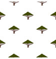tree with large crown pattern flat vector image vector image