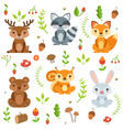 funny forest animals and floral elements isolate vector image