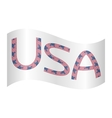Word USA made from american flags waving on white vector image vector image