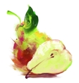 drawing pear with a slice vector image vector image