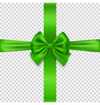 green bow and ribbon isolated on transparent vector image vector image