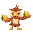 owl with fruits on white background vector image vector image