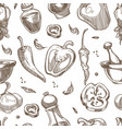 pepper spices or seasoning sketch pattern vector image