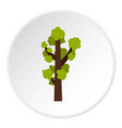 tall tree icon circle vector image vector image