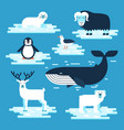 arctic and antarctic animals set flat vector image