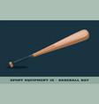 baseball bat icon game equipment professional vector image