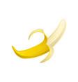 colorful icon of half peeled banana bright yellow vector image