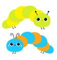 cute crawling caterpillar bug caterpillar insect vector image vector image