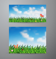 field green grass and sky background vector image vector image