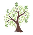 Money tree on white background vector image
