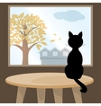 Black cat at window vector image vector image