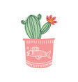 blooming cactus indoor house plant growing in cute vector image vector image