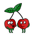 cherries vector image vector image
