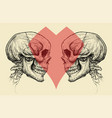 couple skulls and heart symbol vector image vector image