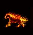 Fire burning horse of running on black background vector image vector image