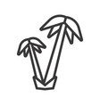 palm trees icon vector image vector image
