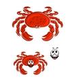 red crab animal cartoon character vector image vector image