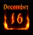 sixteenth december in calendar of fire icon on vector image vector image