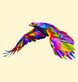 colorful flying eagle vector image