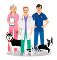 dogs veterinary vector image vector image
