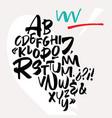 handwritten font script latin calligraphic set vector image vector image