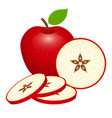red apple isolated vector image vector image
