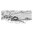 reynard the fox hunting chickens vintage vector image vector image