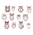 set owls vector image vector image