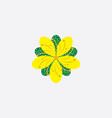 st johns wort herb icon logo vector image