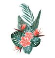 tropical floral greenery wedding bouquet vector image