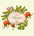 Vintage rosehip banner vector image
