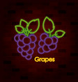 bunches of grapes on neon sign on brick wall vector image