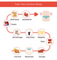 foods that contribute to obesity foods that vector image vector image