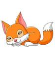 fox sleeping cartoon vector image