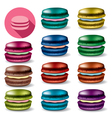 macarons vector image vector image