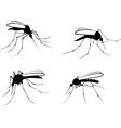 mosquitoes vector image vector image