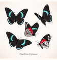 set butterfly in five different views vector image vector image