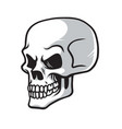 skull cartoon drawing icon vector image