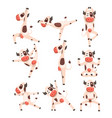 white spotted cow set farm animal character doing vector image