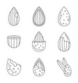 almond walnut oil seed icons set outline style vector image vector image